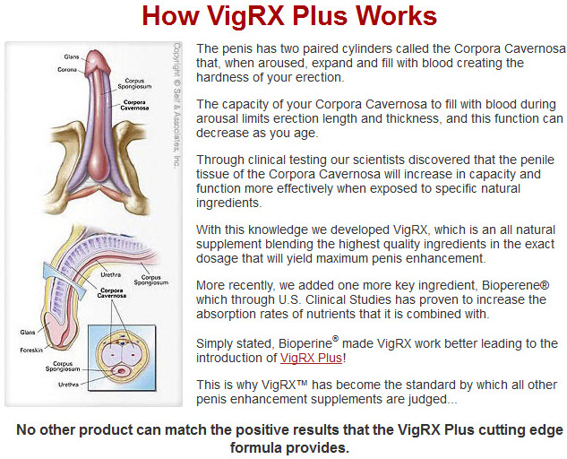 Ingredients For VigRX Plus