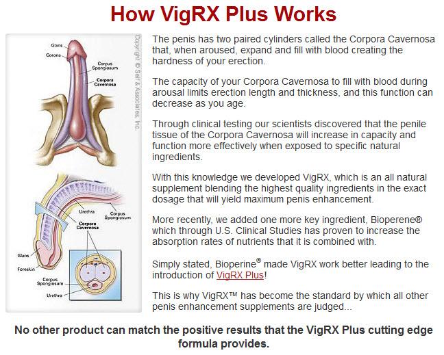 Free Trial Of VigRX Plus